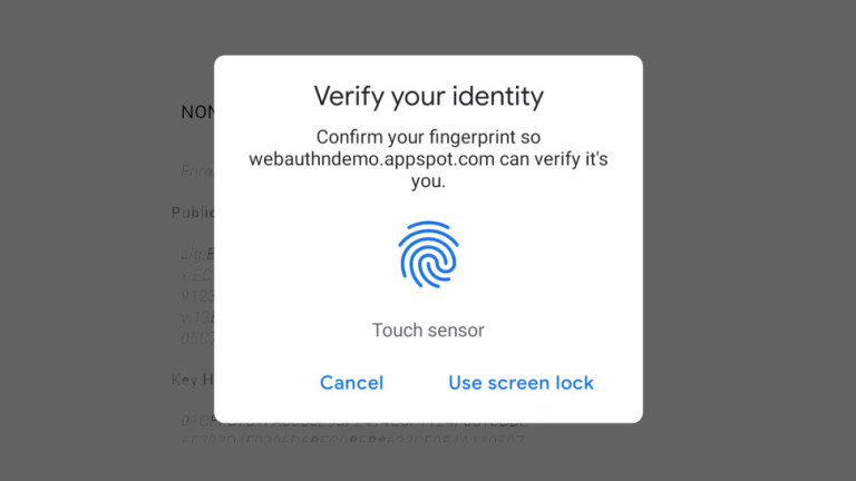 Chrome Fingerprint feature