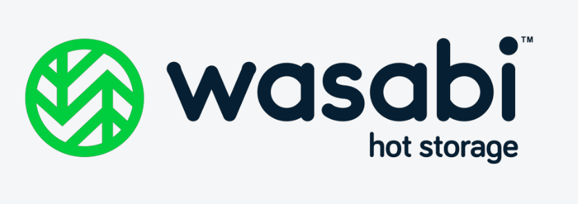 Wasabi raised $68 million to set up best cloud storage